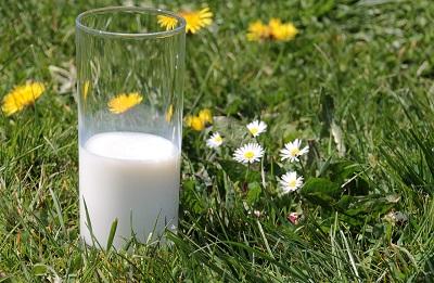 giornata nazionale del latte