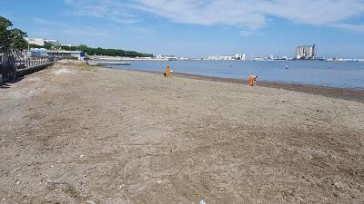 pulizia spiaggetta molo di levante