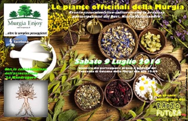locandina piante officinali