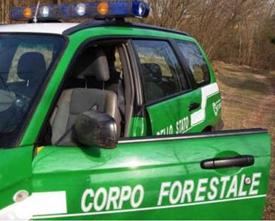 corpo forestale