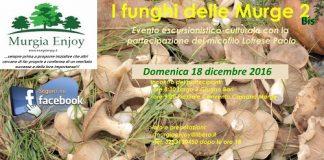 Locandina I funghi delle Murge 2 Bis