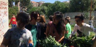 17-05-17 ass. Romano al raccolto degli alunni della scuola Tommaso Fiore