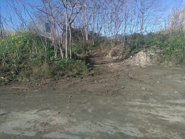 contrasto all'abbandono dei rifiuti - pulizia strada del tesoro