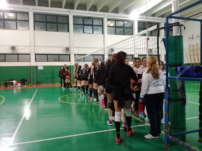 jet log bitonto - new volley torre
