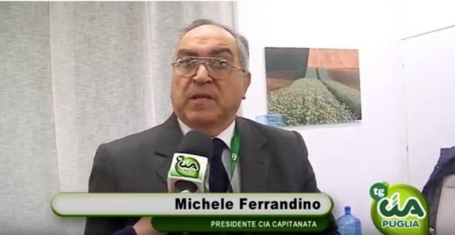 michele ferrandino (presidente cia capitanata)