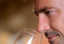 vino (enologo)