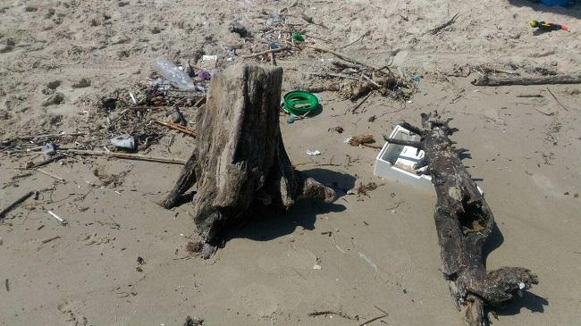 rifiuti spiaggia torre rinalda