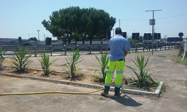 pulizia aree pubbliche barletta
