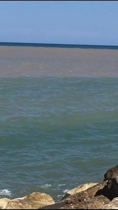 chiazza in mare verso fiumara barletta