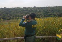 guardie ambientale