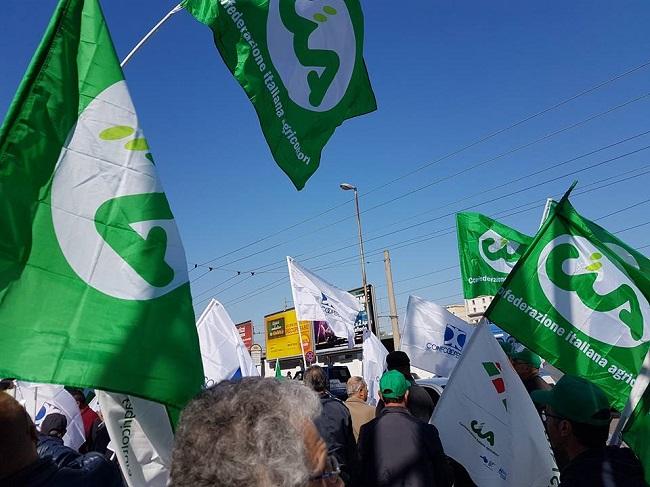 bandiere cia