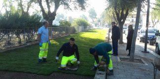 nuovo prato verde fra cattedrale e giardini del castello a barletta