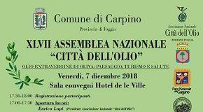 locandina carpino assemblea nazionale