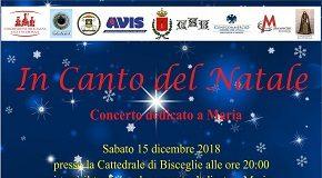 locandina concerto 15 dicembre in canto del natale
