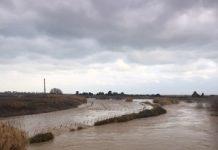 fiume ofanto (barletta)