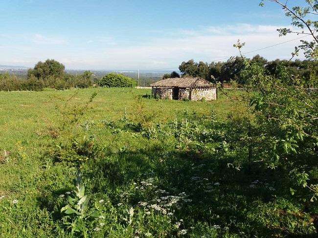 parco archeologico ostuni