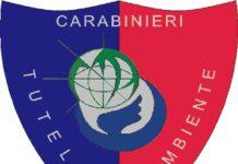noe carabinieri logo