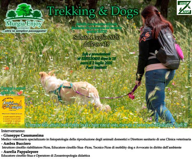banner trekking & dogsrid