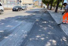 al via il cantiere per la risoluzione del problema causato dalle radici in viale delle regioni