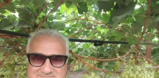 pino lonigro (foto 7012)