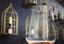 vino (calice con sfondo parete gabbie)