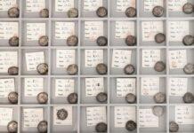 foto dei vassoi contenenti le monete